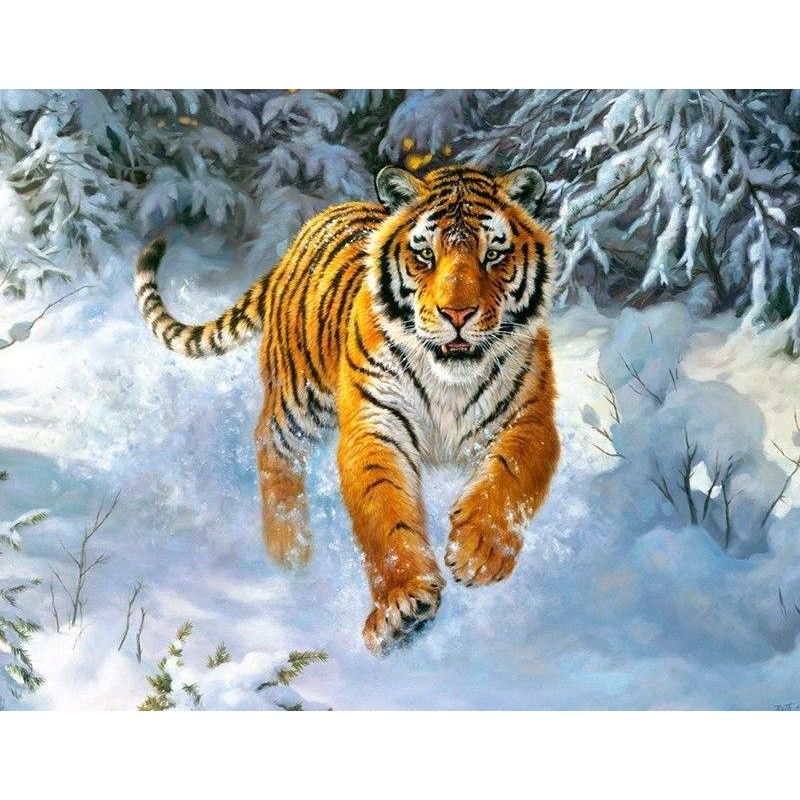 Tiger In The Snow 5D...