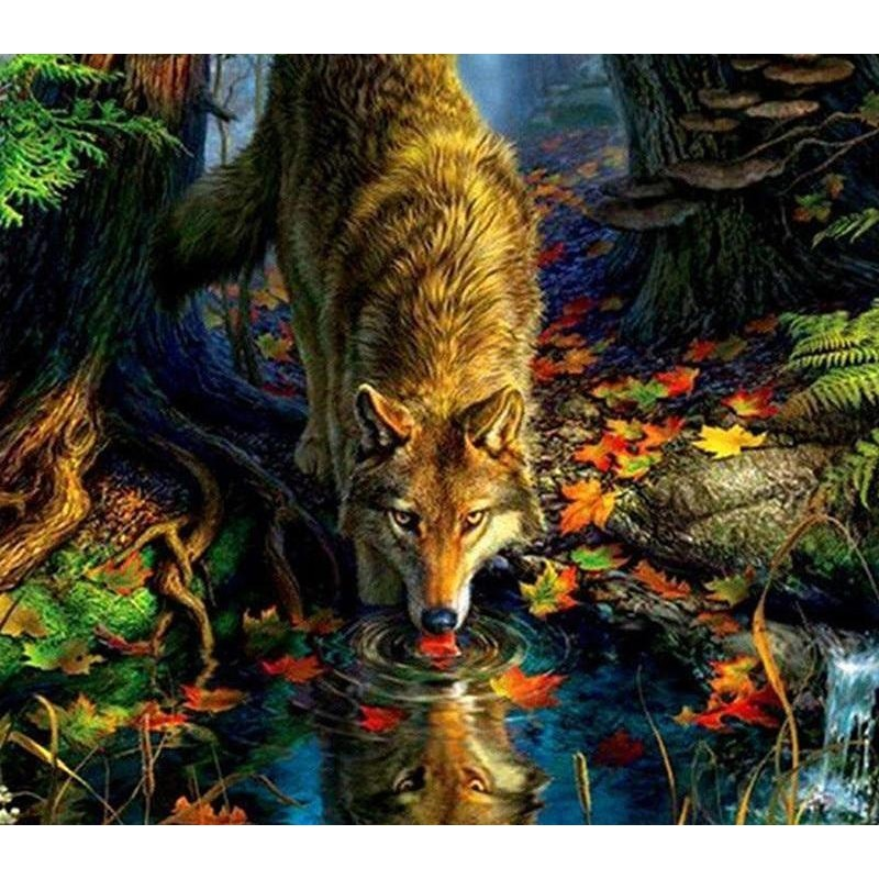 Wolf by the Stream 5...