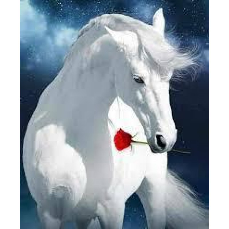 White Horse and Rose...