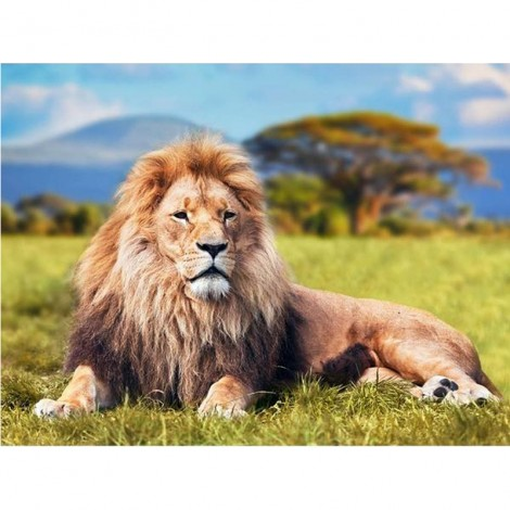 King of the Jungle 5D DIY Paint By Diamond Kit