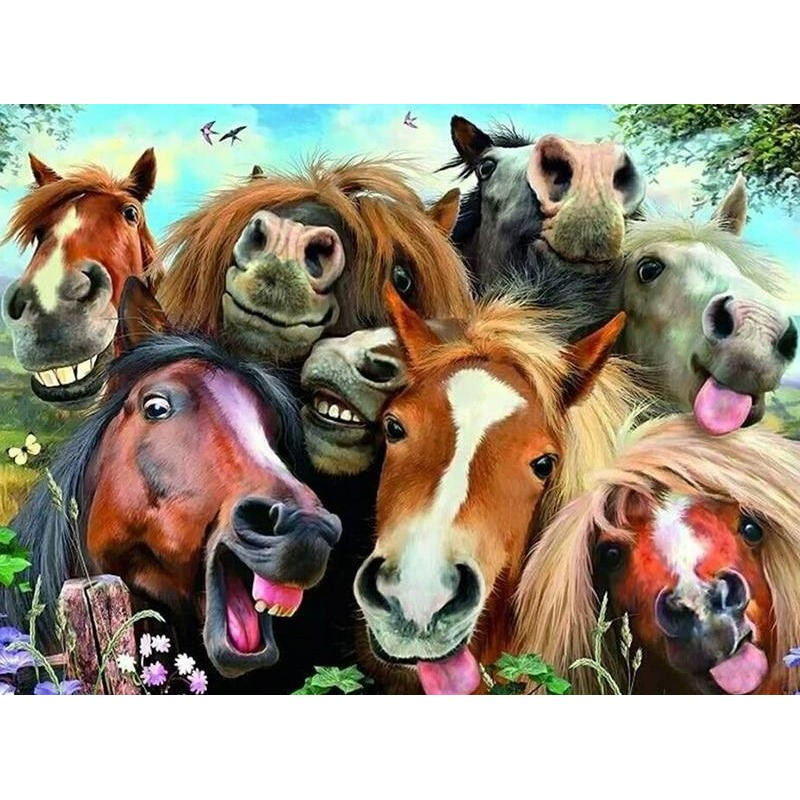 The Horse Family 5D ...