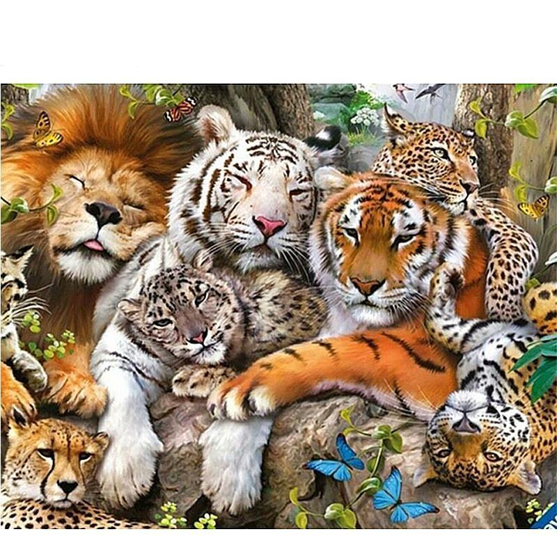The Big Cat Family 5...