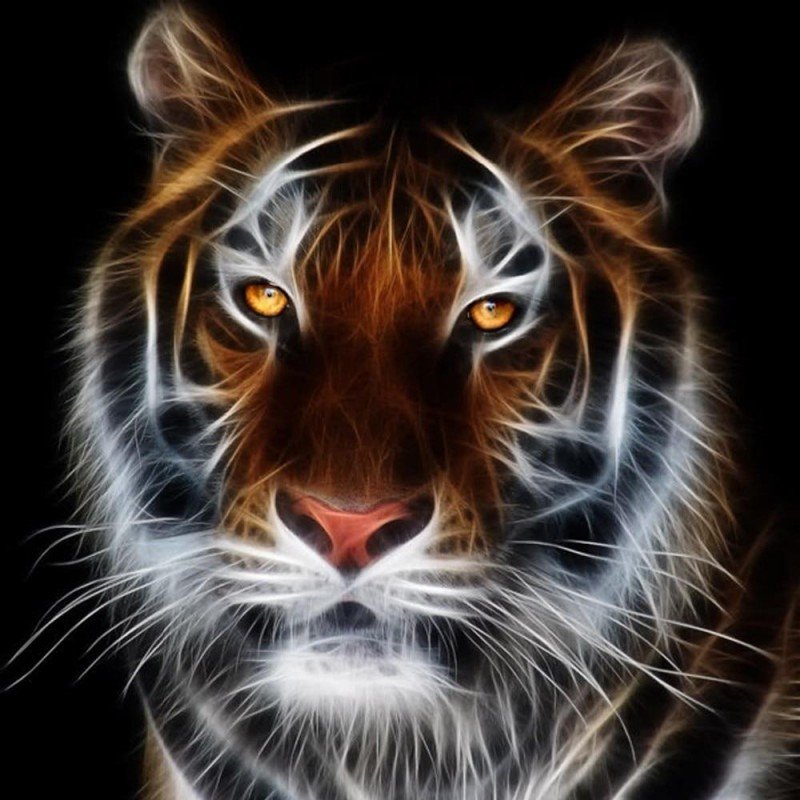 Fearsome Tiger  5D D...