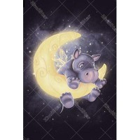 Pig On Moon 5D DIY Paint ...
